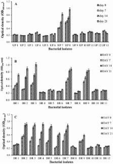 Bioremediation using Fungi - Mycoremediation - Envibrary